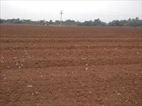 Commercial Land For Lease