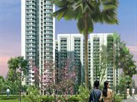 3 Bedroom Flat for sale in DLF The Primus, Sector-82, Gurgaon