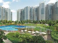 3 Bedroom Flat for rent in Amrapali Zodiac, Sector 120, Noida