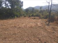 Agricultural Plot / Land for sale in Roha, Raigad