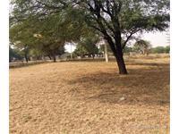 Agricultural Plot / Land for sale in Delhi Road area, Jaipur