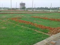 Land for sale in Om Kunj Ph-2, Dadri, Gautam Budh Nagar
