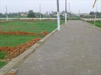 Inside Road View