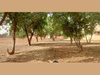 Agricultural Plot / Land for sale in Behror, Alwar