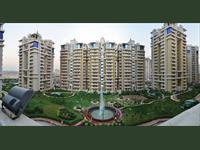 3 Bedroom Flat for rent in Purvanchal Royal City, Sector Chi 5, Greater Noida