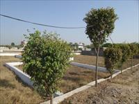 Land for sale in Damik Avadh Enclave, NH-24, Ghaziabad