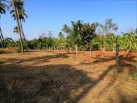 Residential Plot / Land for sale in Velappaya, Thrissur