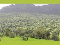 Agricultural Plot / Land for sale in Shahjahanpur, Alwar