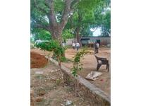 Residential Plot / Land for sale in Sector 97, Faridabad