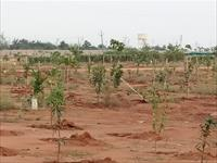 Residential Plot / Land for sale in Shadnagar, Hyderabad