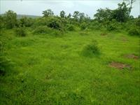 Agricultural Plot / Land for sale in Indapur, Raigad