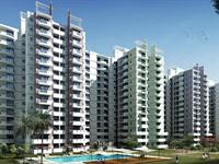 2 Bedroom Flat for sale in Aditya Celebrity Homes, Sector 76, Noida