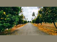 Land for sale in NBR Green Valley, Sarjapur Road area, Bangalore