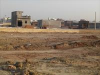 Land for sale in SRD Purvanchal Bhatika, Sector 81, Noida