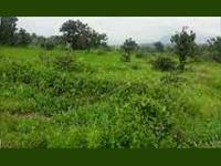 Agricultural Plot / Land for sale in Shriwardhan, Raigad