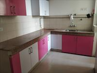 2 Bedroom Flat for rent in Logix Blossom Greens, Sector 143, Noida