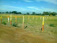 Land for sale in Teej Eco Green City, Rajarhat, Kolkata