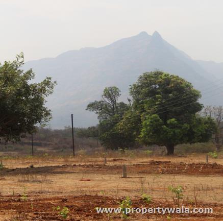 Acreages Malshej Park - Murbad, Thane