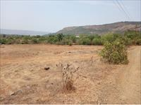 100acres agriculture land for sale at just 6-7kms from Mhasla Bus Depot