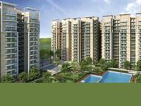 1 Bedroom Flat for sale in Gayatri Life, Noida Extension, Greater Noida