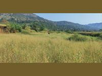 2.75 acres agriculture land for sale near Morbe Dam, at Khalapur.