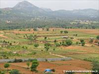Farm for sale in Divine Euphoria, Kanakapura Rd, Bangalore