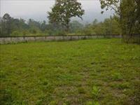 Comm Land for sale in Knowledge Park 4, Greater Noida