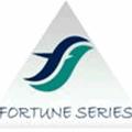 Fortune Series Biz Pvt Ltd