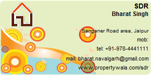 Contact Details of SDR India Pvt Ltd