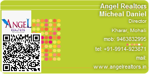 Contact Details of Angel Realtors