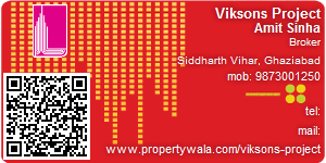 Visiting Card of Viksons Project
