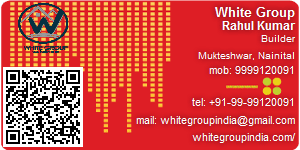 Visiting Card of White Group