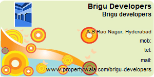 Contact Details of Brigu Developers