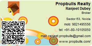 Contact Details of Propbulls Realty