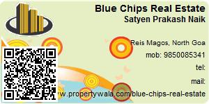 Visiting Card of Blue Chips Real Estate