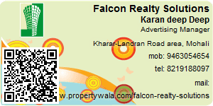 Contact Details of Falcon Realty Solutions