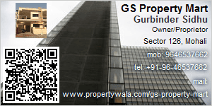 Visiting Card of Real Estate Promoters